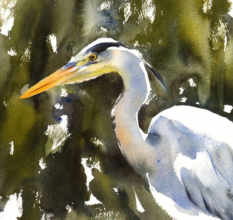Lucy Newton, 'Grey Heron' (Scottish Ornithologists' Club)