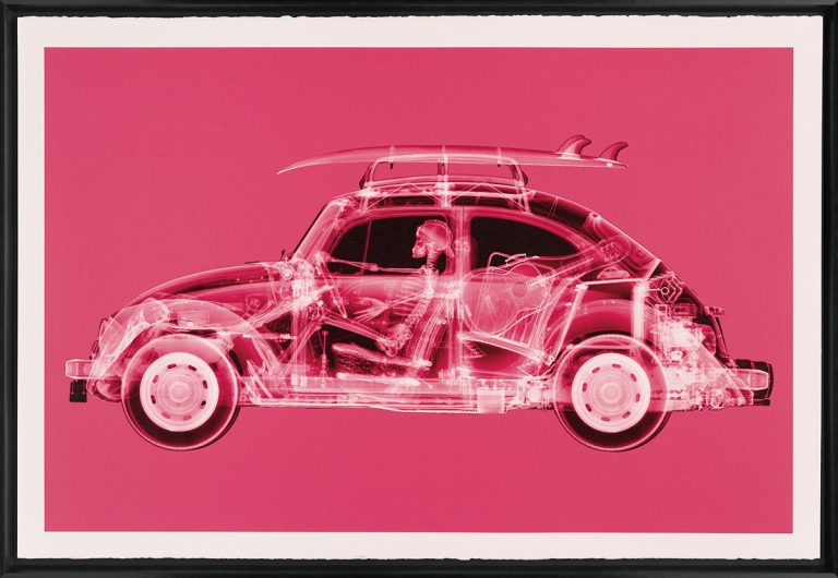 Nick Veasey - California Bug (Large Pink)